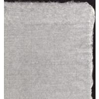Hiromi Japan Papier - Sekishu Torinoko Gampi (Bögen)