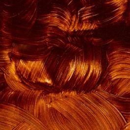 GAMBLIN Conservation Colors Transparente Erde, Orange, 1/2 Napf